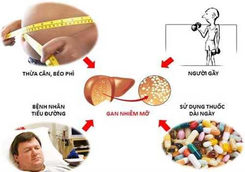 Chữa bệnh gan nhiễm mỡ nhẹ bằng thuốc nam