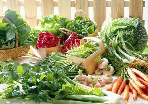Những món ăn rau cho bệnh gút