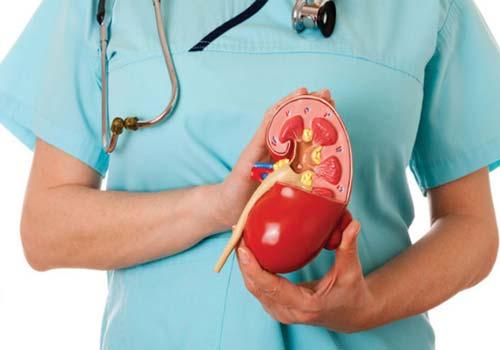 Bệnh sỏi thận nên ăn và kiêng ăn những gì ?