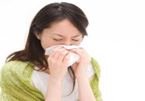 Cách chữa bệnh viêm mũi dị ứng bằng thuốc đông y hiệu quả