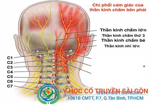 Viêm dây thần kinh gây ra nhiều triệu chứng đau nhức rất khó chịu
