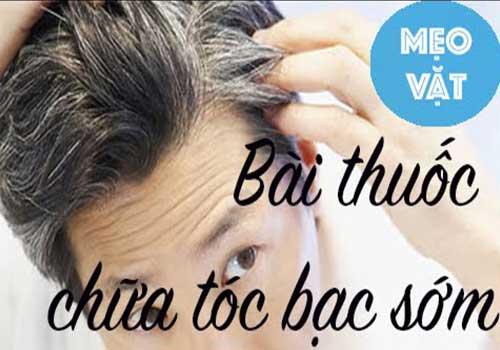 Địa chỉ điều trị và chữa bệnh bạc tóc sớm bằng Đông y ở đâu tốt TPHCM?