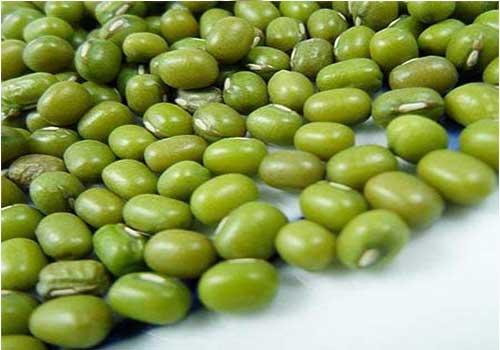 Dùng đậu xanh hầm nhừ với nước, không gia vị có thể hỗ trợ chữa bệnh gút
