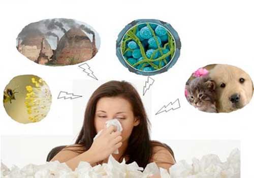 Viêm mũi dị ứng là gì? Nguyên nhân và triệu chứng 1