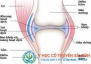 Địa chỉ điều trị và chữa tràn dịch khớp gối bằng đông y ở TPHCM
