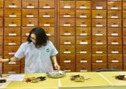 Bài Thuốc nam Bổ Xương Khớp tại y học cổ truyền sài gòn